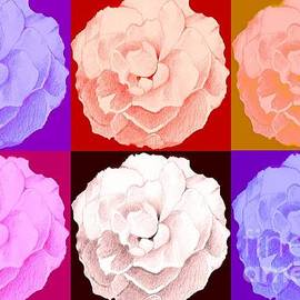 Helena Tiainen - Rose In Six Variations