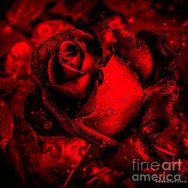 Mona Stut - Furious Rose Magic Red