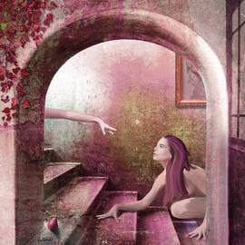 Rose by Van Renselar