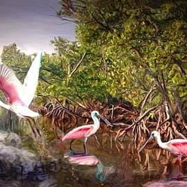 Roseate Spoonbills by Richard Nickson