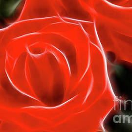Roses-5814-Fractal by Gary Gingrich Galleries