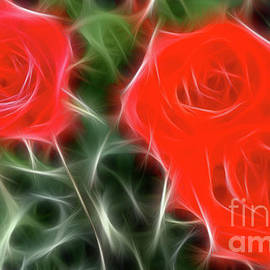 Gary Gingrich Galleries - Roses-5899-Fractal