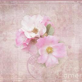 Victoria Harrington - Roses Eternal