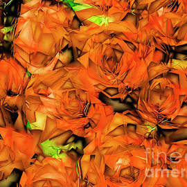 Wingsdomain Art and Photography - Roses in Abstract 20170325
