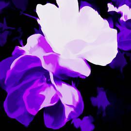 Roses In Gentle Purple  by Debra Lynch