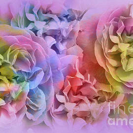 Malanda Warner - Roses In My Dreams, Lavender