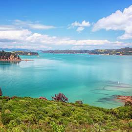 Joan Carroll - Rotoroa Island New Zealand View