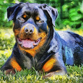 Laurence Canter - Rottweiler