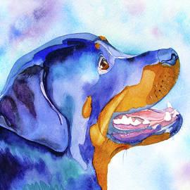Rotty Rottweiler Blues by Jo Lynch