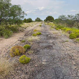 Route 66 Roadbed West of Montoya by Rick Pisio