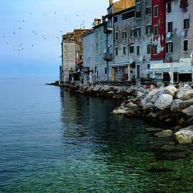 Rovinj Venetian Buildings And Adriatic Sea, Istria, Croatia by Global Light Photography - Nicole Leffer