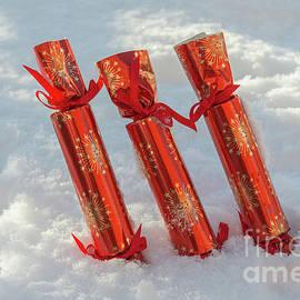 Row Of Christmas Crackers - Amanda Elwell