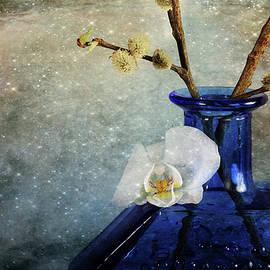 Randi Grace Nilsberg - Royal Blue