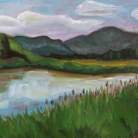 Royal Wetlands by Tara D Kemp