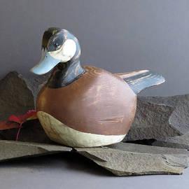 Bruce Peterson - Ruddy Duck