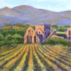 David Zimmerman - Ruines d une Eglise