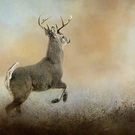 Jai Johnson - Run From Negativity Deer Art