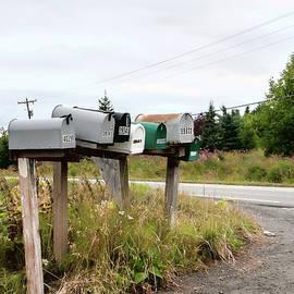 Phyllis Taylor - Rural Delivery No 2
