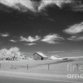 Rural Landscape, Black and White Infrared by Greg Kopriva