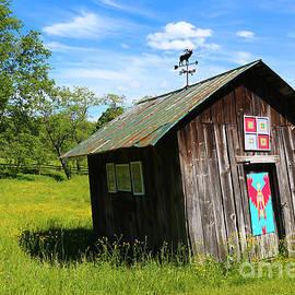 Rural Panache by Marty Fancy