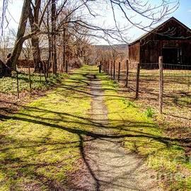 Betsy Zimmerli - Rural Path