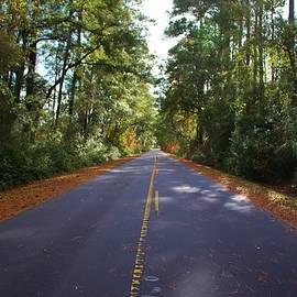 Cynthia Guinn - Rural Road