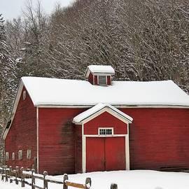 Carol McGrath - Rural Winter
