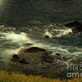 Rushing Over the Rocks by RC DeWinter