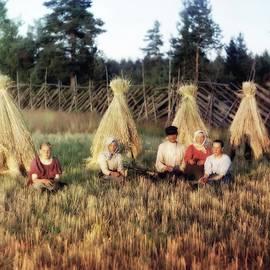 Russian Farming 2 by John Feiser