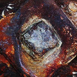Rust Squared by Debbie Oppermann