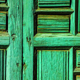 Rustic Green Door - Garry Gay