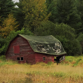 Rustic Red Barn Keene Valley Ny V by Terry DeLuco