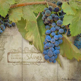 Rustic Vineyard - Shiraz Wine Grapes over Stone by Audrey Jeanne Roberts