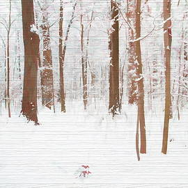 Dan Sproul - Rustic Winter Forest