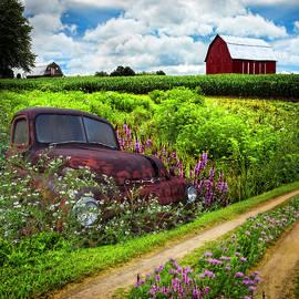Rusty Dodge Planted in the Wildflowers by Debra and Dave Vanderlaan