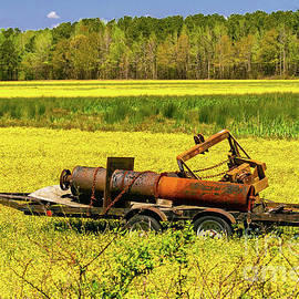 Rusty Farm Equipment in Yellow Field by Norma Brandsberg