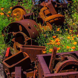 Rusty Train Parts In Poppies - Garry Gay