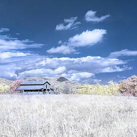 S C Upstate Barn Faux Color by Charles Hite