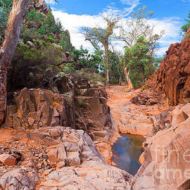 Bill  Robinson - Sacred Canyon