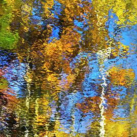 Safari Mosaic Abstract Art by Christina Rollo