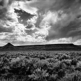 Sage and Clouds by Steven Clark