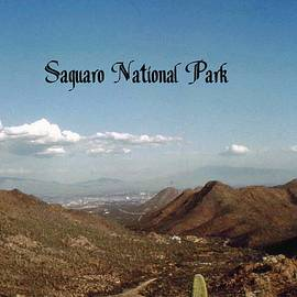 Saguaro National Park by Gary Wonning