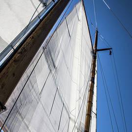 Karol Livote - Sail Away