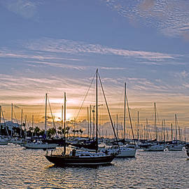 Steve Lipson - Sailboat Bay 2590A