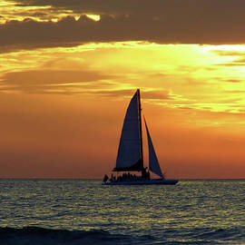 Sailing Into The Sunset by D Hackett