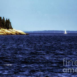 Sailing Penobscoy Bay by Thomas R Fletcher