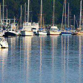 Sails At Dock by Karol Livote