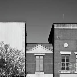 Salisbury Architecture by Patrick M Lynch