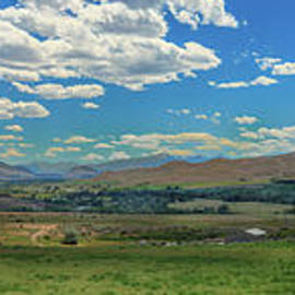 Salmon Valley by Robert Bales