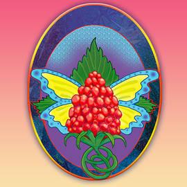 Salmonberry Fairy Clan Insignia by Teresa Ascone
